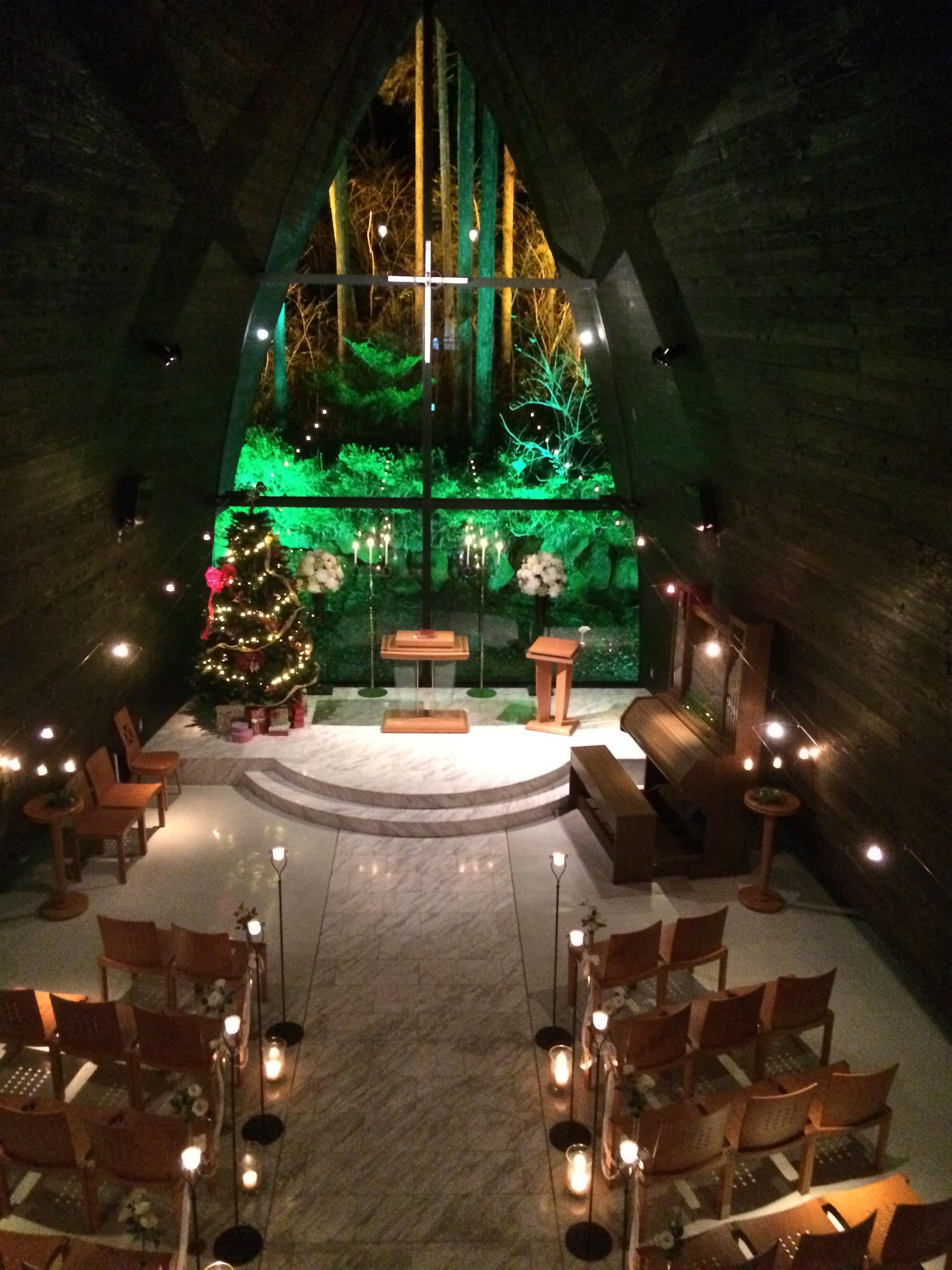 ≪聖なる森でクリスマス婚≫★5大特典付き★クリスマス限定プラン